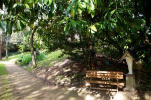 jardin-rennes-saint-louis-15