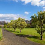 jardin-rennes-saint-louis-31
