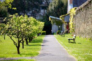 jardin-rennes-saint-louis-36